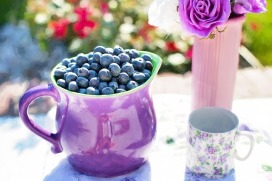 Blueberries Sweet Fruit Fresh Summer Healthy